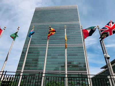 Организация борьбы мирового сообщества против коррупции