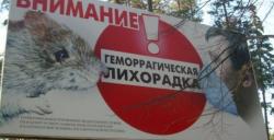 В Саратовской области продолжается опасная геморрагическая эпидемия