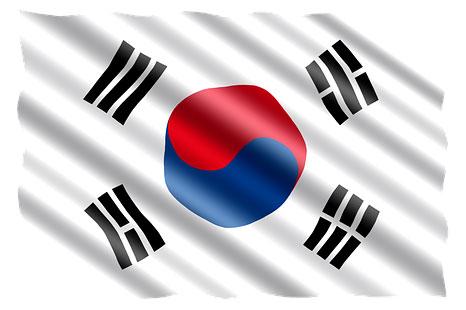 Как происходит борьба с коррупцией в Южной Корее, каковы ее особенности и недостатки