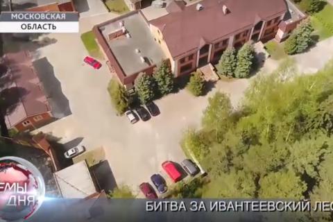 На журналистов «Красной Линии» напали во время расследования в Ивантеевском лесу