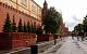 Путин назвал «блестящей» идею высадить 27 млн деревьев в честь павших в ВОВ