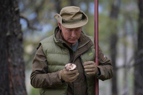 В Кремле заявили, что Путин не ищет себе преемника