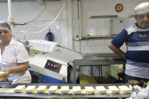 Более половины сливочного масла в России признано некачественным