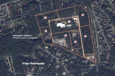 Ведомости: участки Сечина в Барвихе стоят более 110 млн долларов