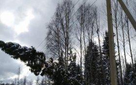 Отчаявшиеся жители Тверской области попросили Путина их расстрелять