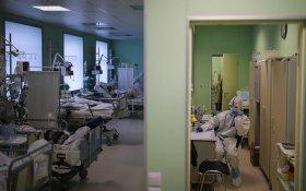 В России за сутки от коронавируса умерло рекордное число зараженных