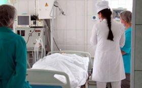 Росстат зафиксировал в 2,5 раза больше смертей с коронавирусом, чем официально сообщается