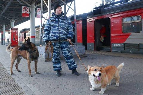 Опрос: Половина россиян ждет результаты по борьбе с коронавирусом от федеральных властей