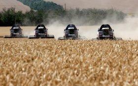 Чиновники объяснили рост цен в России … успехами сельского хозяйства