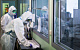 Число умерших от коронавируса в России превысило 122 тысячи человек
