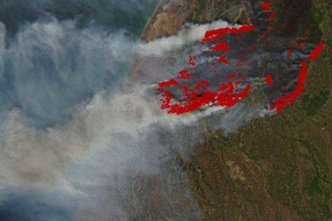 Чиновники преуменьшают площадь пожаров в 20 тысяч раз