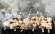 В России вырастут цены на колбасу и сосиски