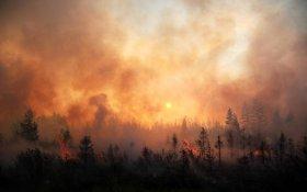 Коммунисты настаивают на увеличении финансирования мероприятий по тушению лесных пожаров