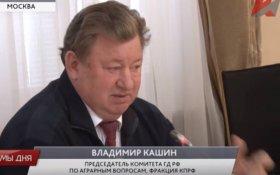 Владимир Кашин предложил изменить законодательство для обеспечения качества зерна