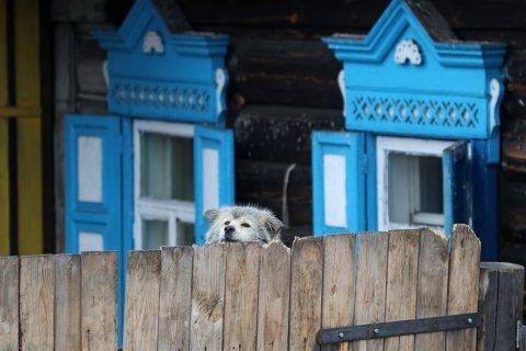 Россиян предупредили о штрафах за заборы на дачах