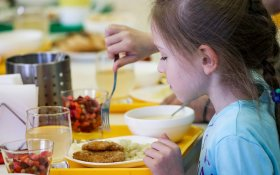 Коммунисты внесли в Госдуму законопроект о бесплатном горячем питании в средней школе