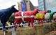 СМИ: Европа тонет в молоке из-за санкций