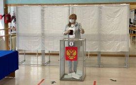 Элла Памфилова пообещала после голосования по Конституции составить «черный файл» провокаторов