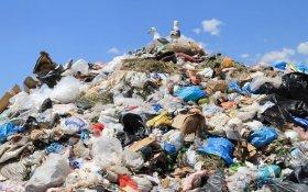 В Минприроды поддержали предложение депутата-коммуниста о запрете продажи одноразового пластика в России