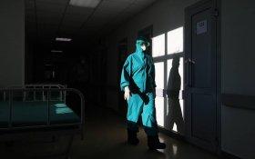 В России впервые от коронавируса умерло за сутки более 500 человек