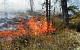 В Сибири и на Дальнем Востоке горят леса на площади в два миллиона гектаров. Их не тушат — «не положено»