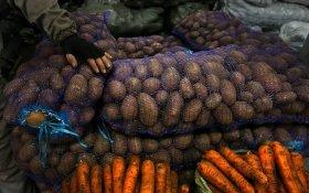 Росстат: С начала года картофель подорожал на 70%