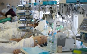 Три четверти пациентов с коронавирусом, переведенных на ИВЛ, умерли