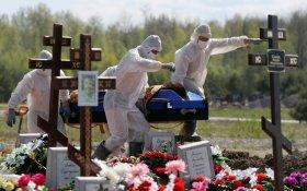 Число умерших от коронавируса в России превысило 24 тысячи человек