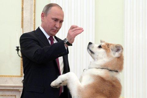 На финансирование СМИ в год президентских выборов правительство выделило 82,4 млрд рублей