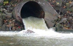 Минприроды назвало самые загрязняемые реки России