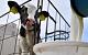 Россия ограничила импорт белорусского молока. Белоруссия обвинила РФ в неадекватности и протекционизме