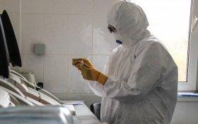 Минздрав впервые назвал число умерших из-за коронавируса медиков. Их в три раза меньше, чем насчитали сами врачи