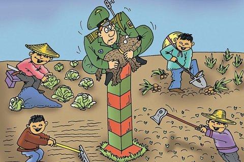 Китайцы засадят в России 1000 му лазурником растопыренным