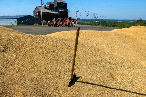 На конференции ВТО Россия предложит сократить поддержку аграриев