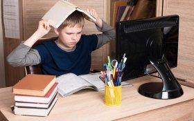 Юрий Афонин: Дистанционное обучение усугубляет социальное неравенство