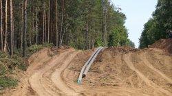 """Специальный репортаж """"Нефть или Бузулукский бор"""""""