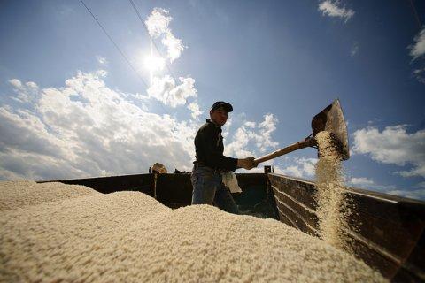 Минсельхоз просит 40 млрд рублей на субсидии аграриям