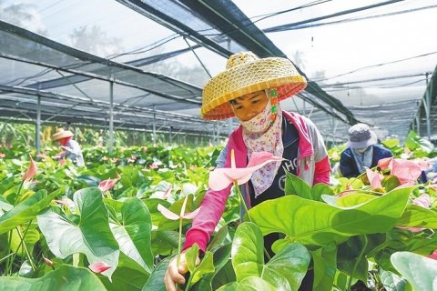 В Китае опубликована Белая книга «Борьба с бедностью: опыт и вклад Китая»