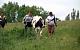 Семья из Липецкой области получила в подарок корову