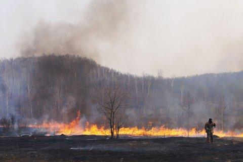 Фракция КПРФ в Госдуме предлагает передать функции по тушению лесных пожаров Министерству по чрезвычайным ситуациям