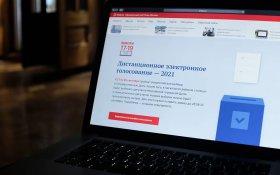 В Москве проведут пересчет результатов электронного голосования